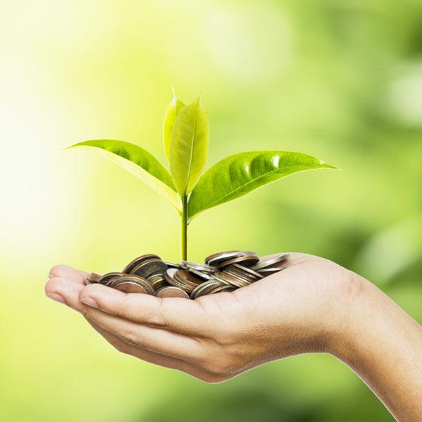 environment grants in wallonia